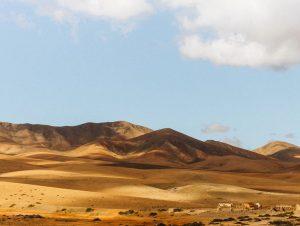 Mietwagen & Auto Mieten Flughafen Fuerteventura
